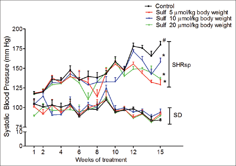 Figure 2: Effect of sulforaphane on systolic blood pressure (measured by tail-cuff) in SHRsp and Sprague–Dawley rats. The systolic blood pressure in SHRsp and Sprague–Dawley rats is significantly different (#<i>P</i> < 0.05). The blood pressure measured in sulforaphane-treated SHRsp rats is significantly lower than that in corn oil-treated SHRsp rats, *<i>P</i> < 0.05 versus the control of the same age and strain, <i>n</i> = 5–6 rats per group, mean ± standard error of the mean